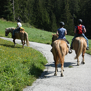 Excursions with horses